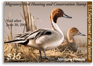 duck_stamp