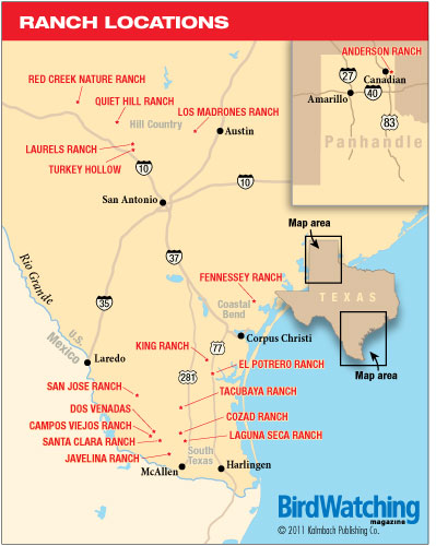 Four-star ranches in the Lone Star State - BirdWatching