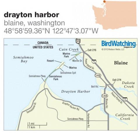 149. Drayton Harbor, Blaine, Washington
