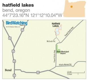 BW0213_HatfieldLakesOR500x500