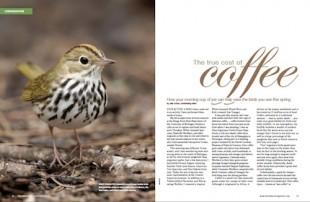 BW-0213-coffeespread-500