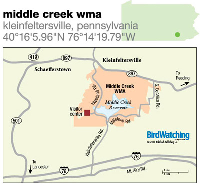 126. Middle Creek WMA, Kleinfeltersville, Pennsylvania
