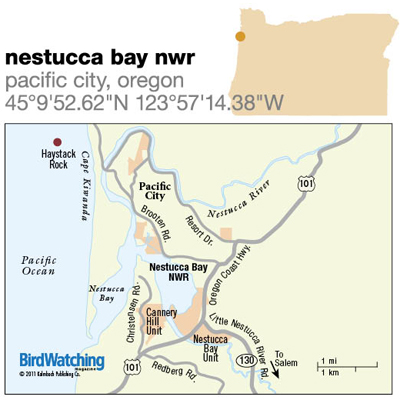 127. Nestucca Bay NWR, Pacific City, Oregon