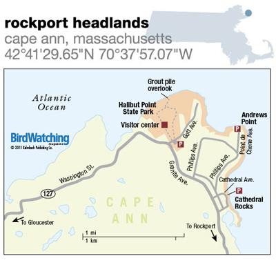 128. Rockport Headlands, Cape Ann, Massachusetts