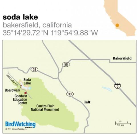 123. Soda Lake, Bakersfield, California