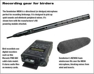 recording_gear_0408