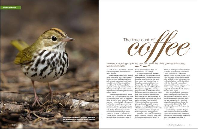 True Cost of Coffee 660