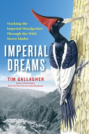 ImperialDreams cover