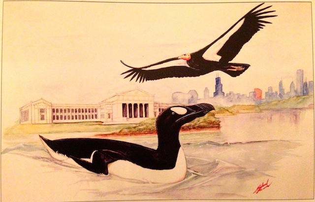 A Great Auk, symbol of the American Ornithologists' Union, and a California Condor, Symbol of the Cooper Ornithological Society, in front of the Field Museum in Chicago, site of the August 2013 AOU-COS meeting.