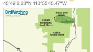 BW1013_MT_BridgerMtHawkWatch