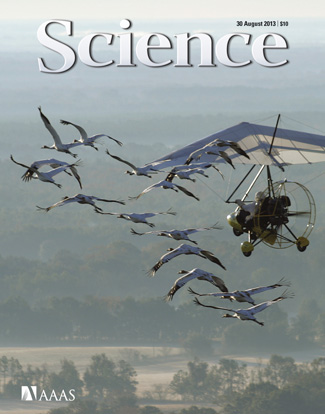 The study is featured on the cover of the August 30 issue of Science.