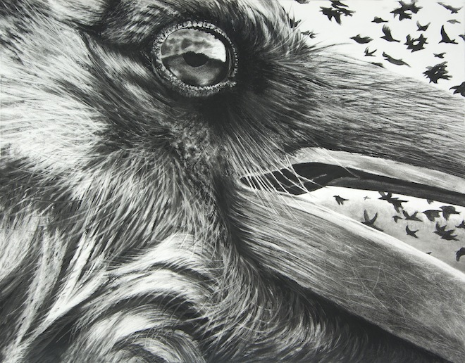 Karen Bondarchuk, Portent, 2012, charcoal on Rives paper.