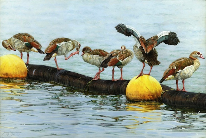 Jenny Hyde-Johnson, Geese and the Golden Eggs, 2013, acrylic on canvas.