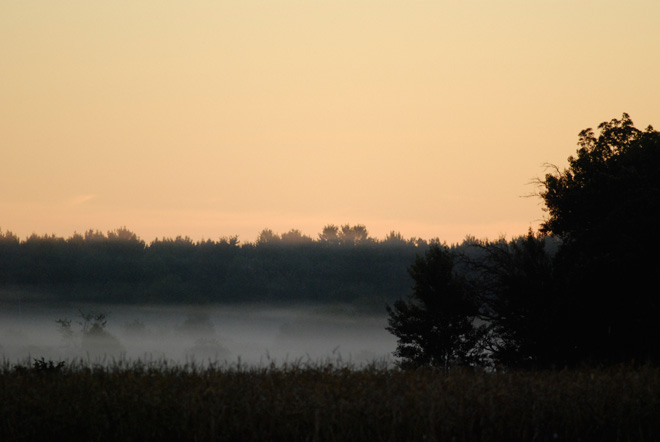 Sunrise and fog at White River Marsh. Photo by Matt Mendenhall
