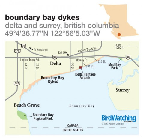173. Boundary Bay Dykes, Delta and Surrey, British Columbia