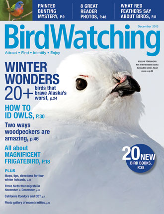 BW1213_Cover_330x430