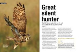 Silent-Hunter-Original