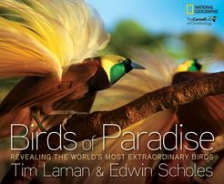 BirdsOfParadise-sm