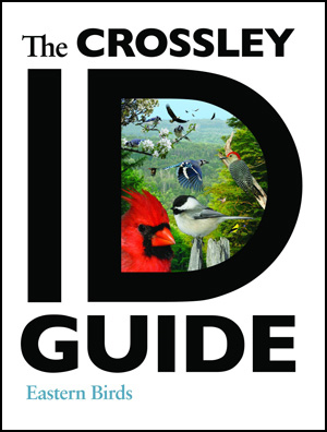 Crossley-ID-Guide-300