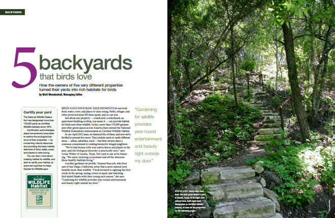 five-backyards-spread