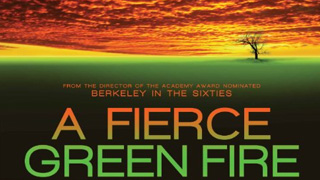 FierceGreen-320
