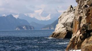 KenaiFjords_8200