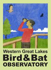 bird&bat-logo-165