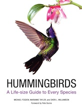 Hummingbirds_165x218