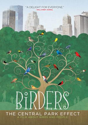 birders_DVD-300