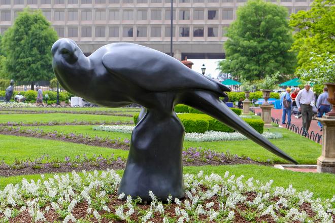 Carolina-Parakeet_Todd-McGrain_Smithsonian-660