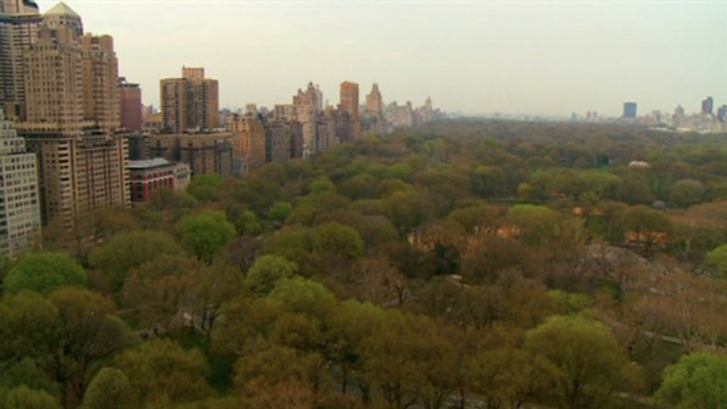 Manhattan's Central Park, in a scene from Birders: The Central Park Effect. Image courtesy HBO