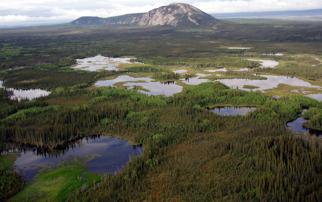 Boreal wetlands in the Northwest Territories. Photo © Ducks Unlimited, courtesy of Boreal Songbird Initiative.