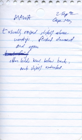 Sibley Field Notes_330x561