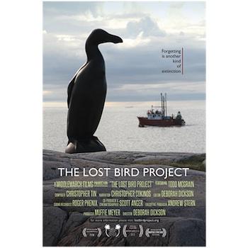 lost bird poster