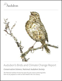 Audubon's Birds and Climate Change Report (climate.audubon.org).