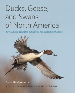 Ducks-Geese-Swans-300