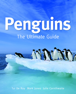 Penguins-300