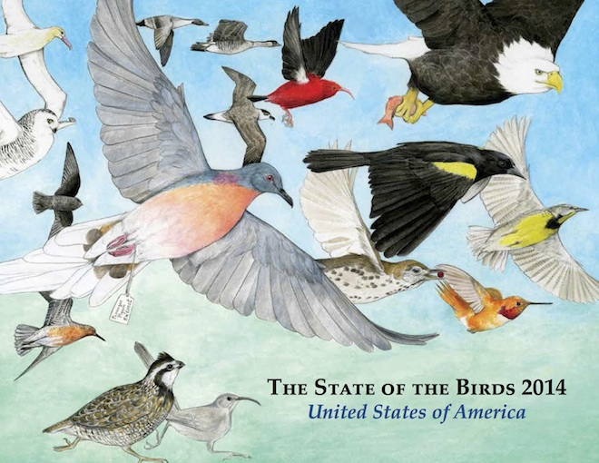 The State of the Birds 2014 (www.stateofthebirds.org).