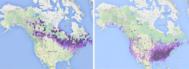 July 2003-13 (left); December 2003-13 (right)