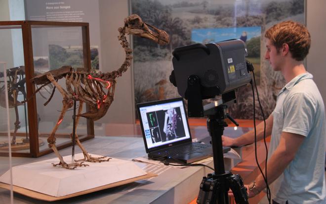Biedlingmaier-scanning-Port-Louis-dodo-660