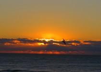 sunrise1-9-14-2014-5-41-53-AM