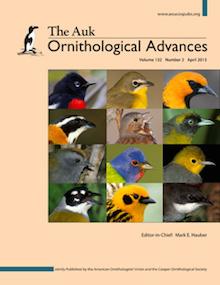 The Auk: Ornithological Advances, Volume 132, No. 2, April 2015.