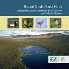 Boreal Birds Need Half: Maintaining North America's Bird Nursery and Why It Matters (May 2014).
