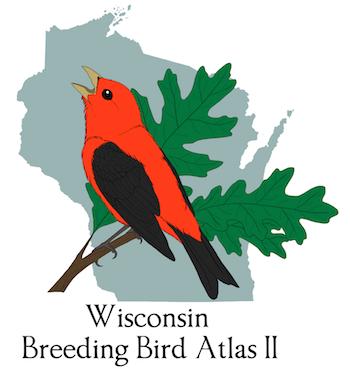 Atlas logo by Roxanne Schrank