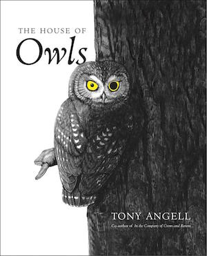 House of Owls_300x371