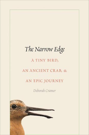 Narrow Edge_300x456