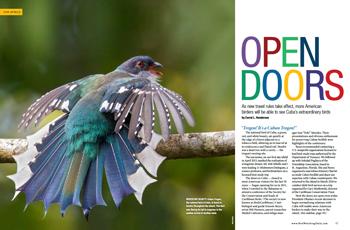 Open-doors-350
