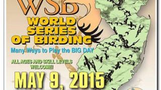 World Series of Birding Poster_330x417